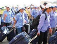 Xuất khẩu lao động Nhật Bản đơn hàng 1 năm có nên đi không?